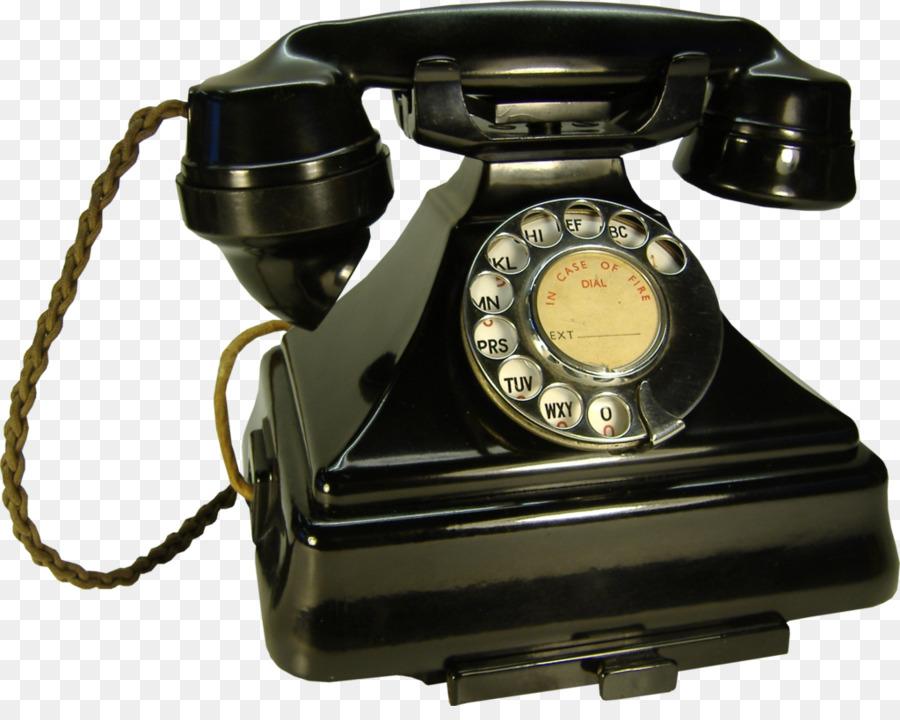 Телефонные картинки фото хвойных