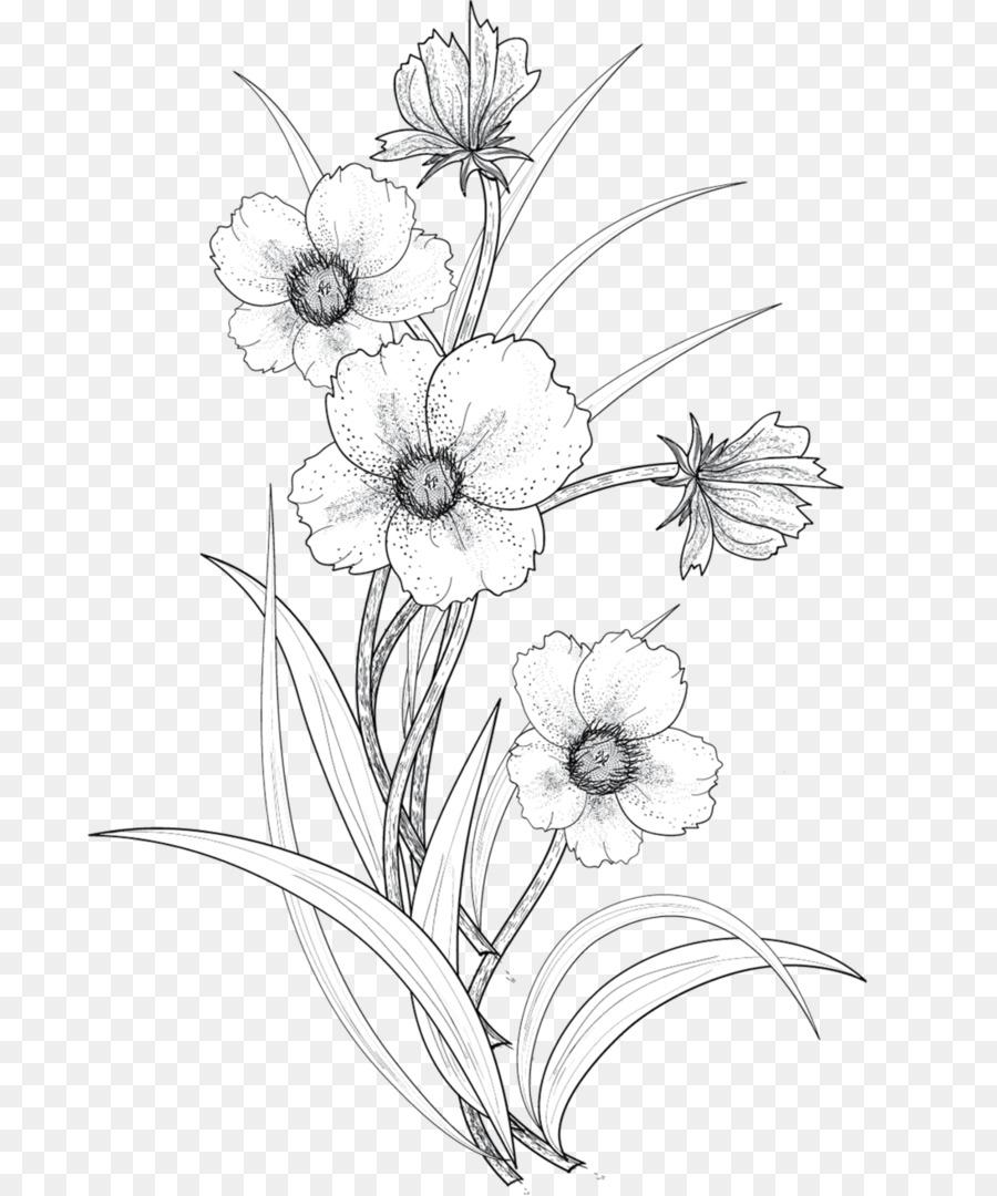 Цветы картинки без фона карандашом, новым годом