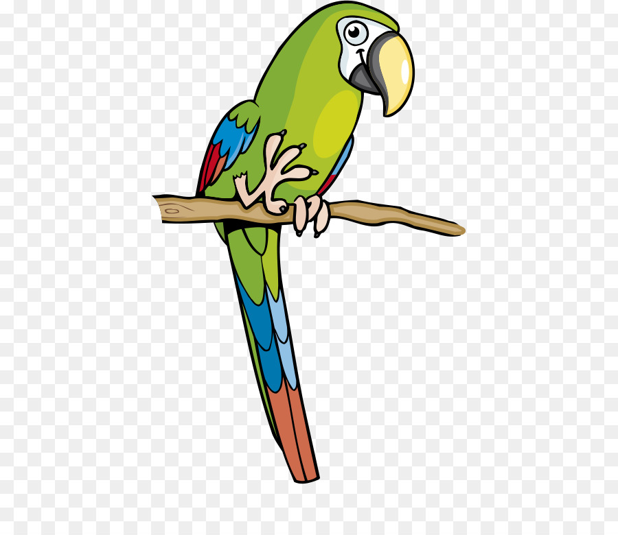 Мультяшные картинки попугаев