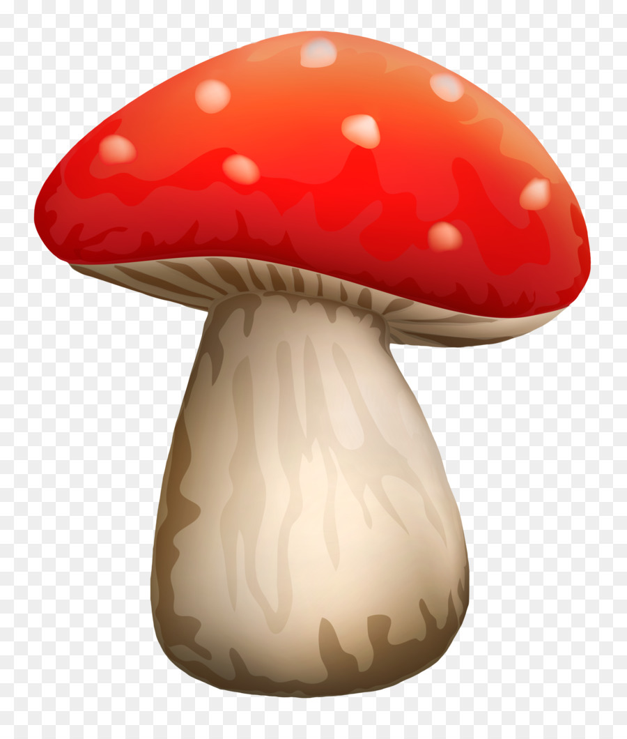 интернет-банку белый гриб рисунок картинка перечислены