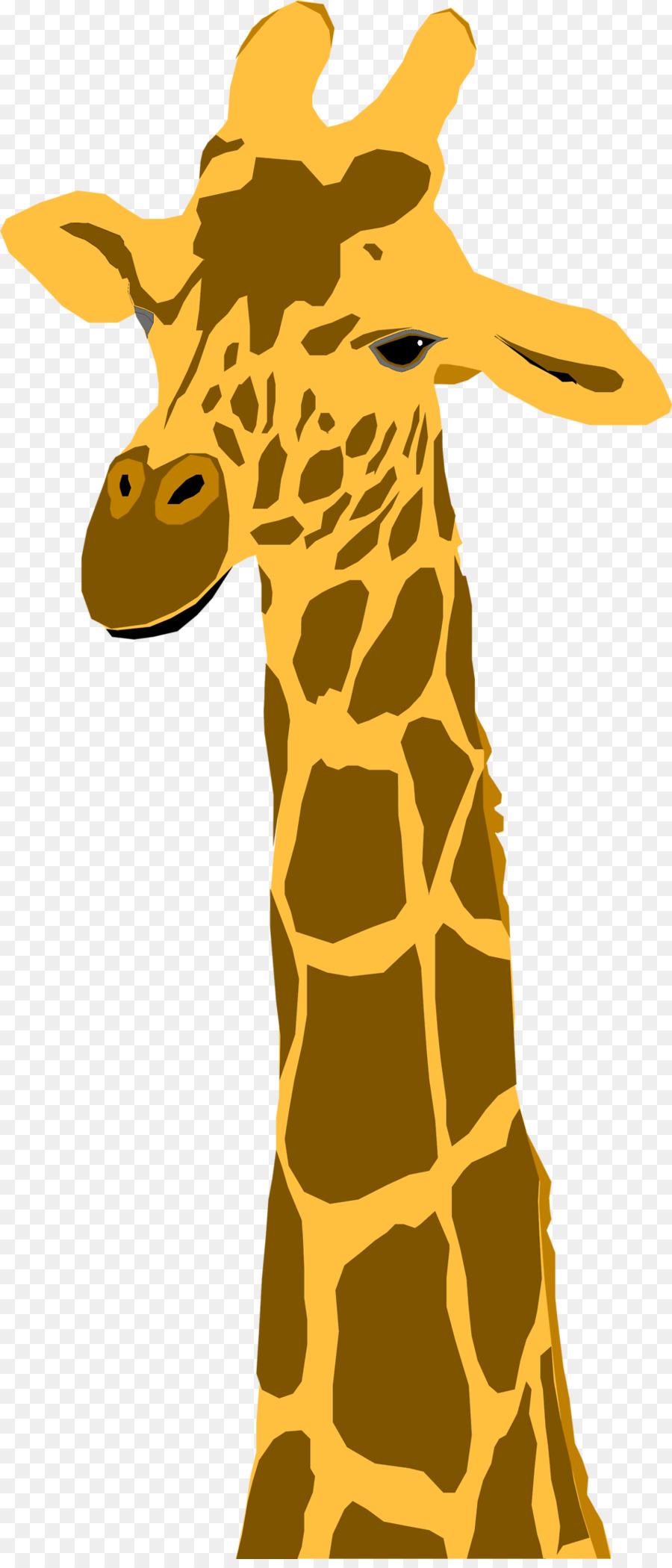 Анимация картинки жираф, дню