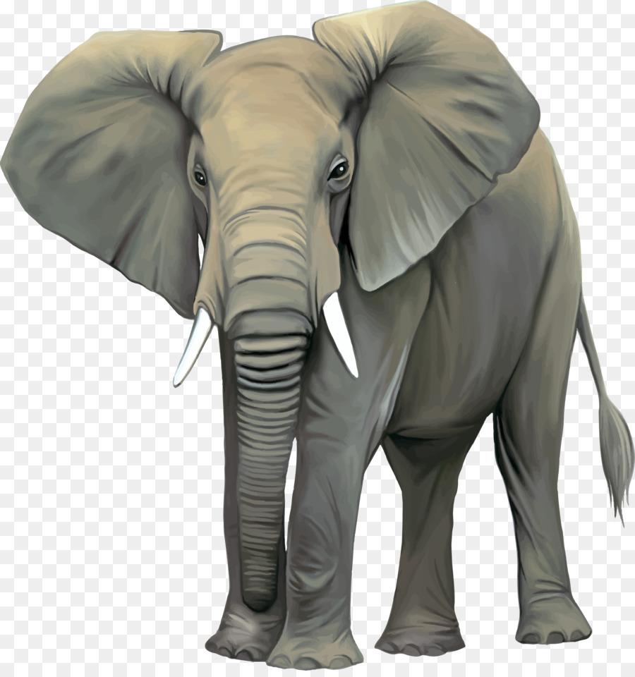 слон на прозрачном фоне картинки для