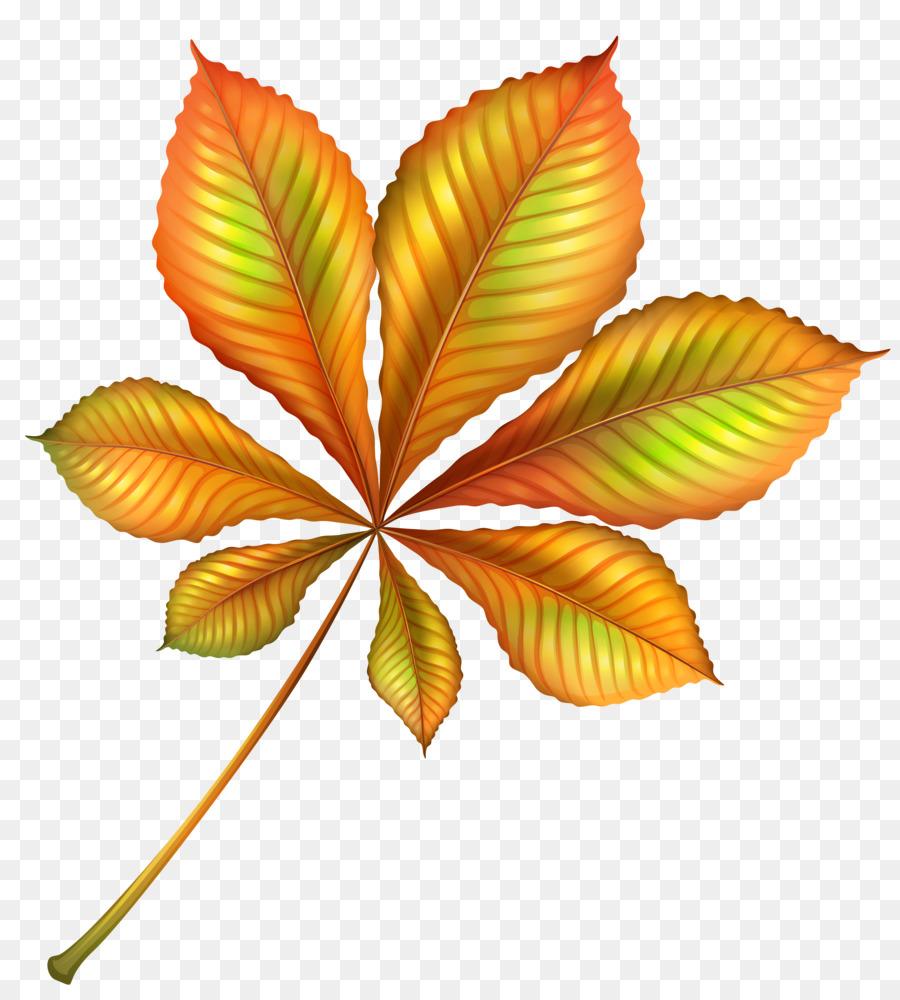 картинки осенних листиков деревьев что