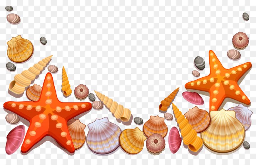 рисунок ракушек и морских звезд детали включая