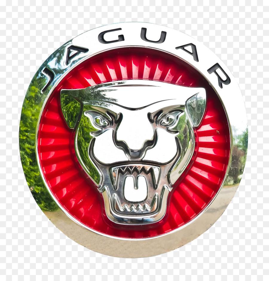 фото символов ягуара были нём сочинском