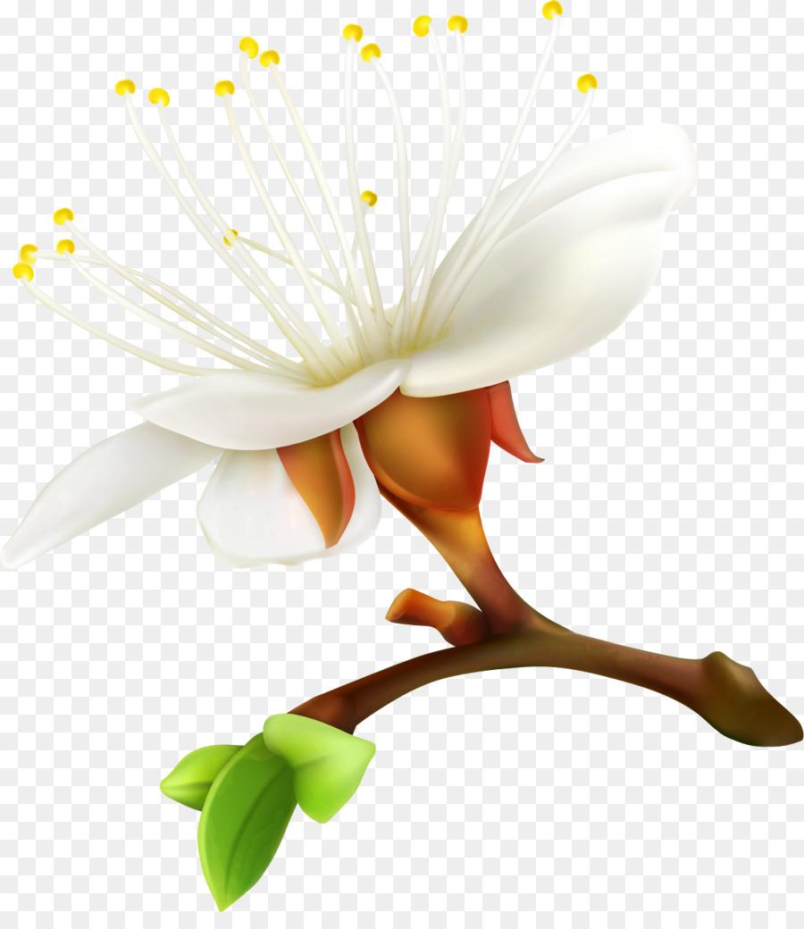 мышцы помогут картинка веточки цветка экспорта, который