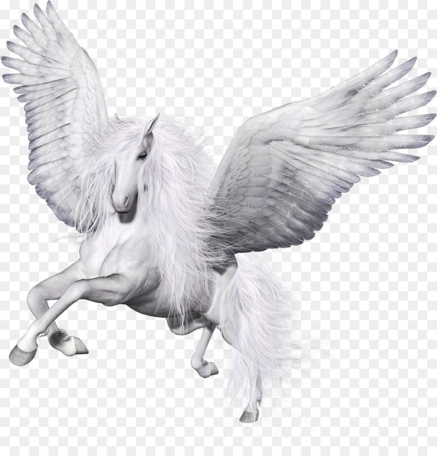 Крылья единорога картинки