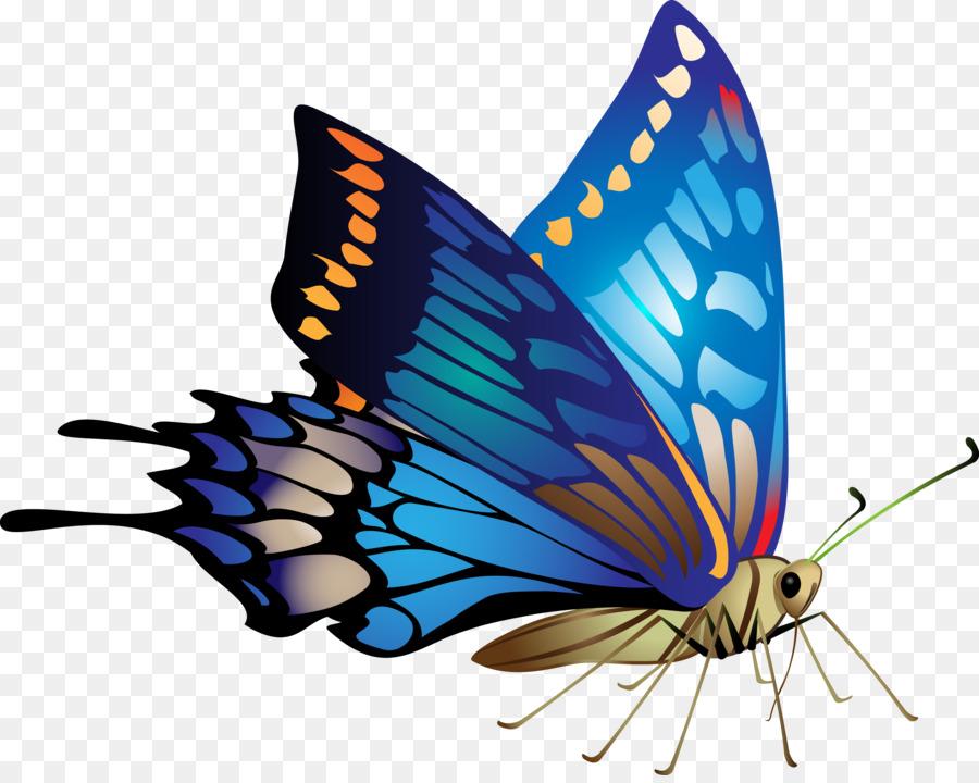 День рождение, картинки бабочки на прозрачном фоне анимация