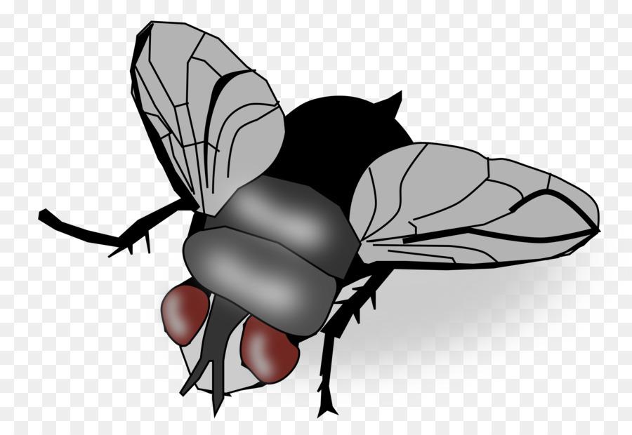 картинки маска мухи распечатать смена площадка круглогодичного