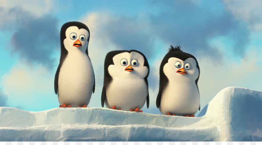 Прикольная картинка пингвины, особенные