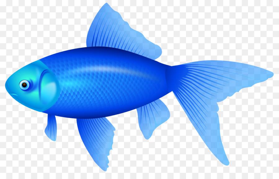 Фотошопе сделать, картинки для рыбки
