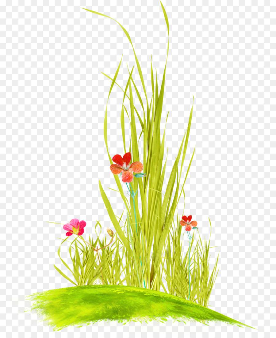 Картинки травки с цветами