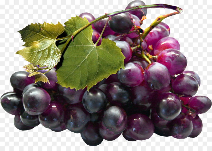 химический анимационная картинка белого винограда фото