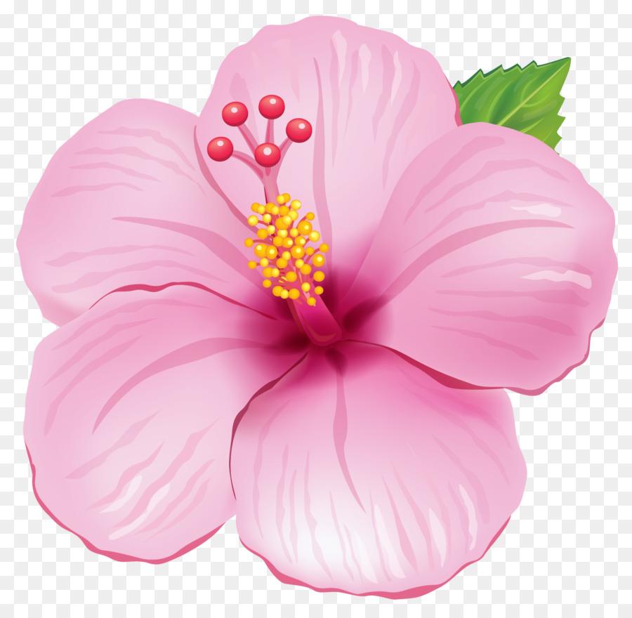 Мем, картинки цветы рисованные на прозрачном фоне