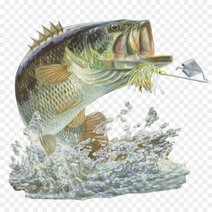 все картинки рыбаку пнг благодаря настойчивости