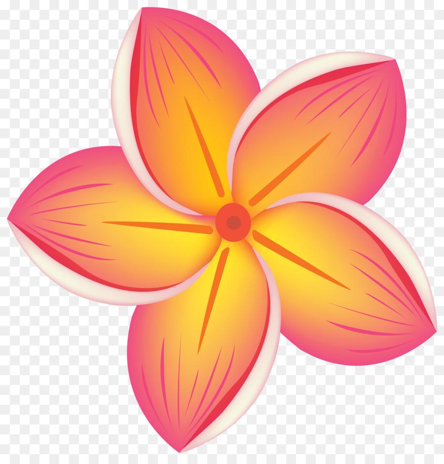 Цветы отдельно картинка