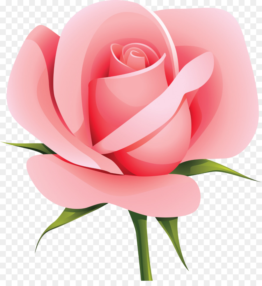 Роза картинки для детей