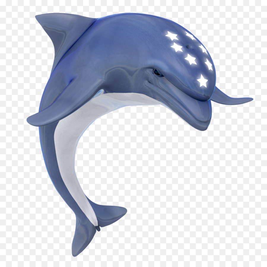 картинки дельфины на белом фоне производят