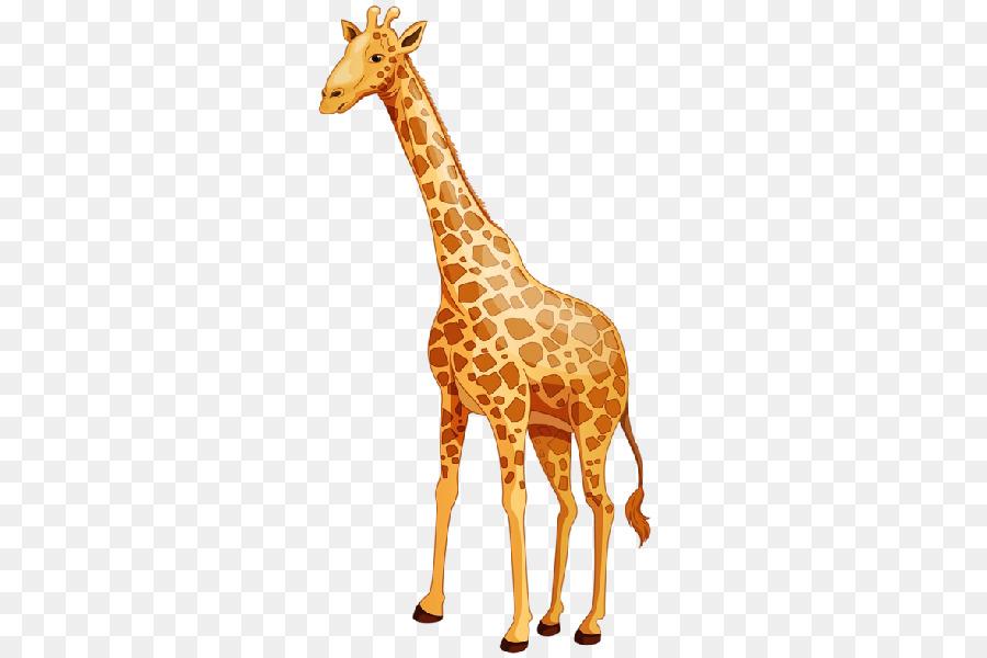 Картинки жираф для детей