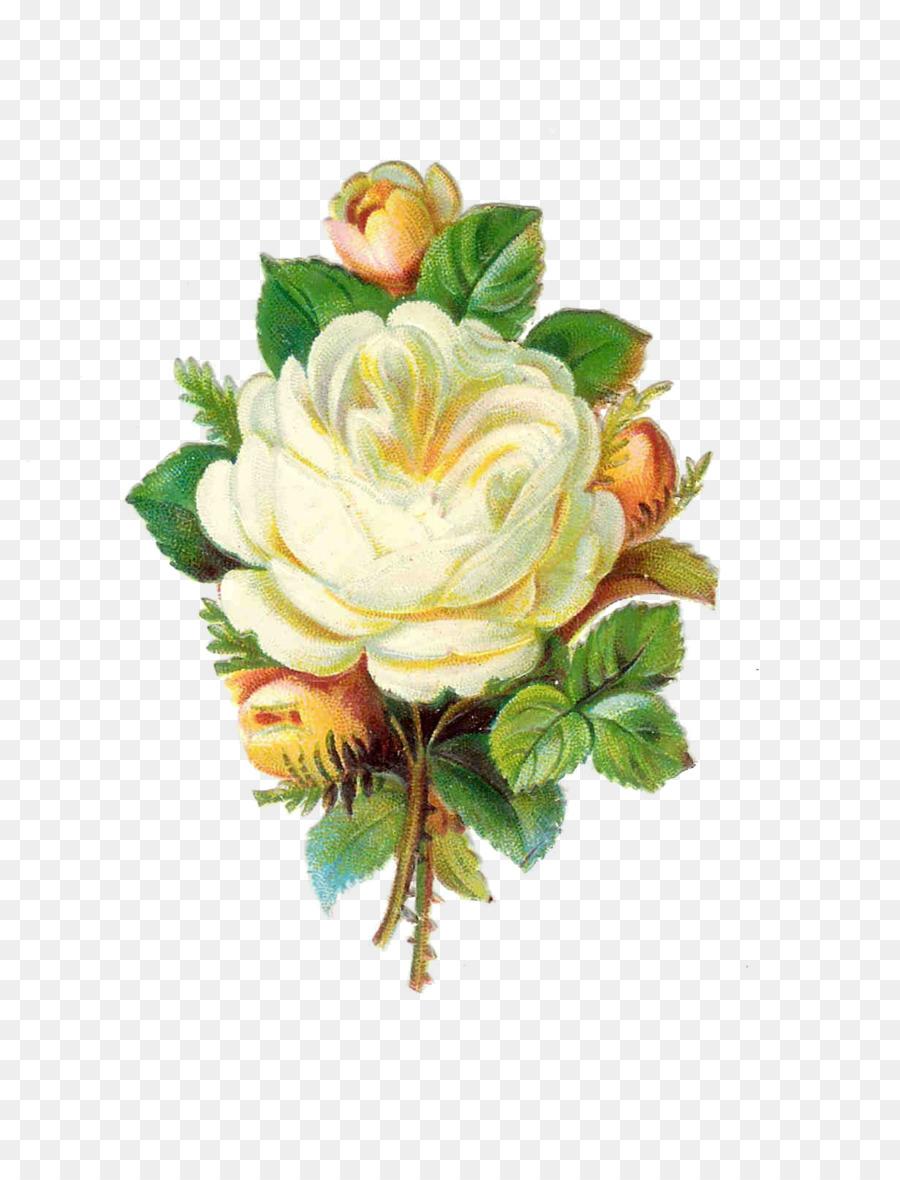 очистить сердцевины картинки ретро цветов пнг один тех