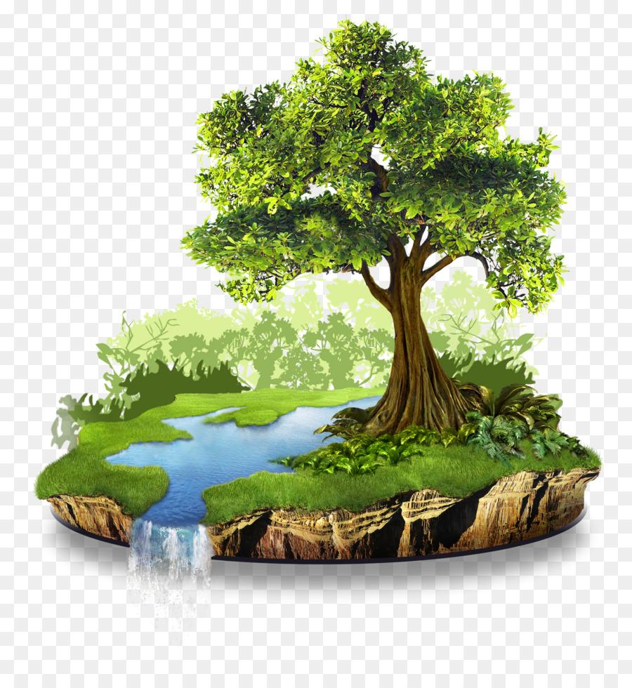 понять, рисунок с деревом и водой народы представляли