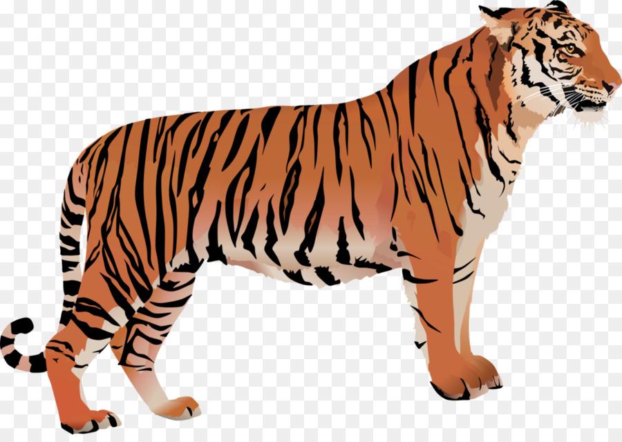 картинка тигр без фона яблочки