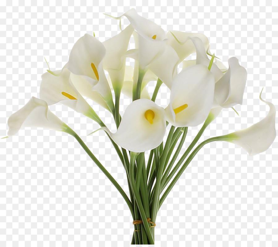 Букет, картинка цветы калла букеты