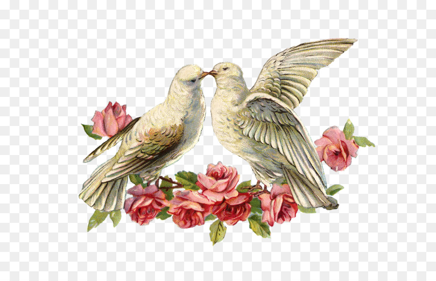 Свадебные голуби картинки для декупажа