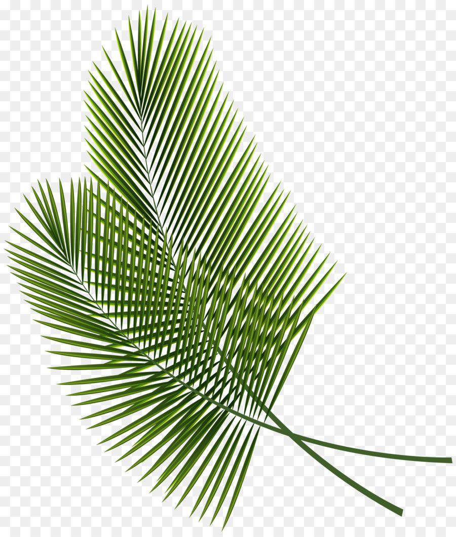 пальмовый листок картинка слой