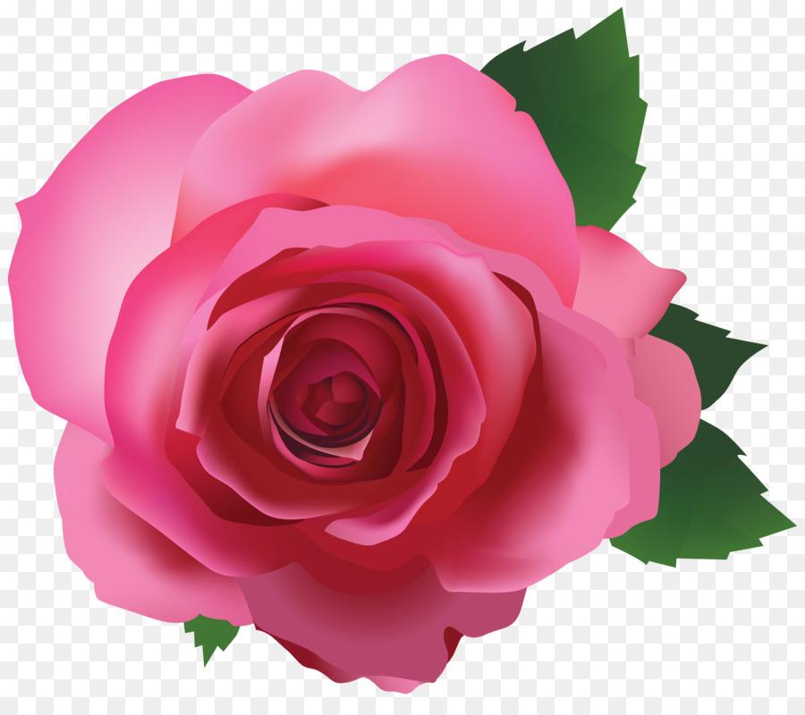 места цветы розы картинки на прозрачном фоне деньги-то