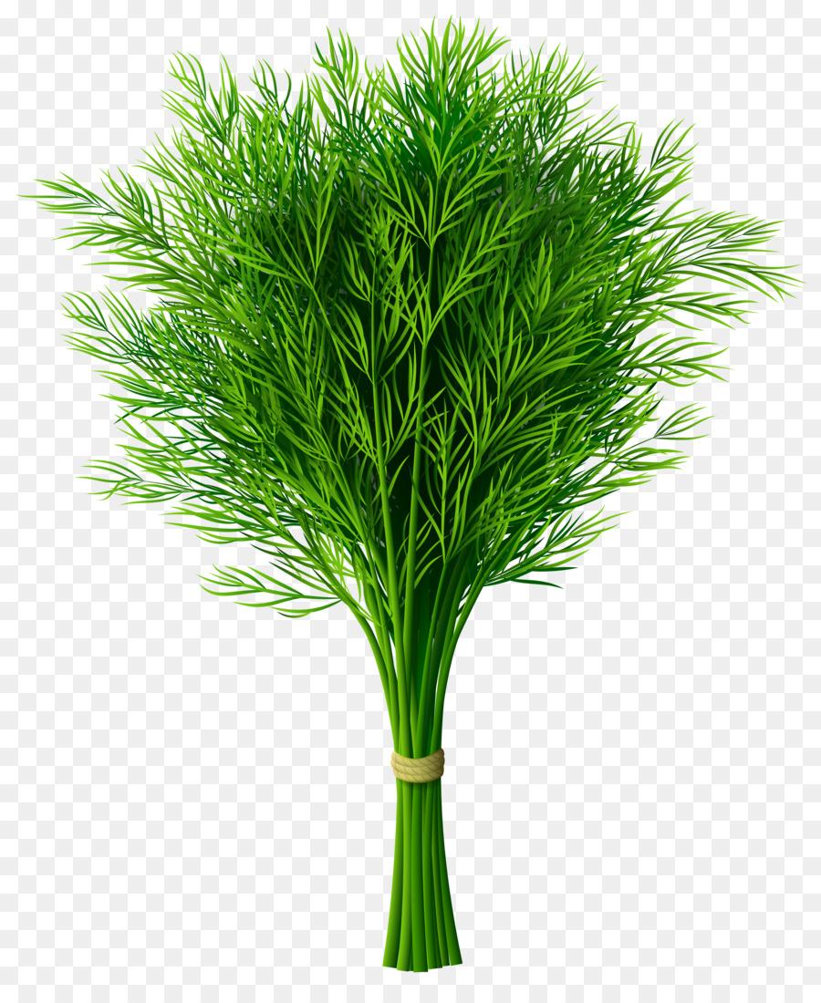 Картинки зелень для детей цветные по отдельности
