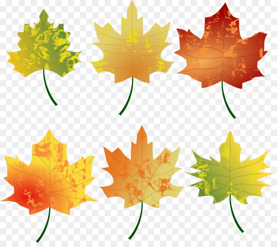 Картинки осень листья для детей, картинки