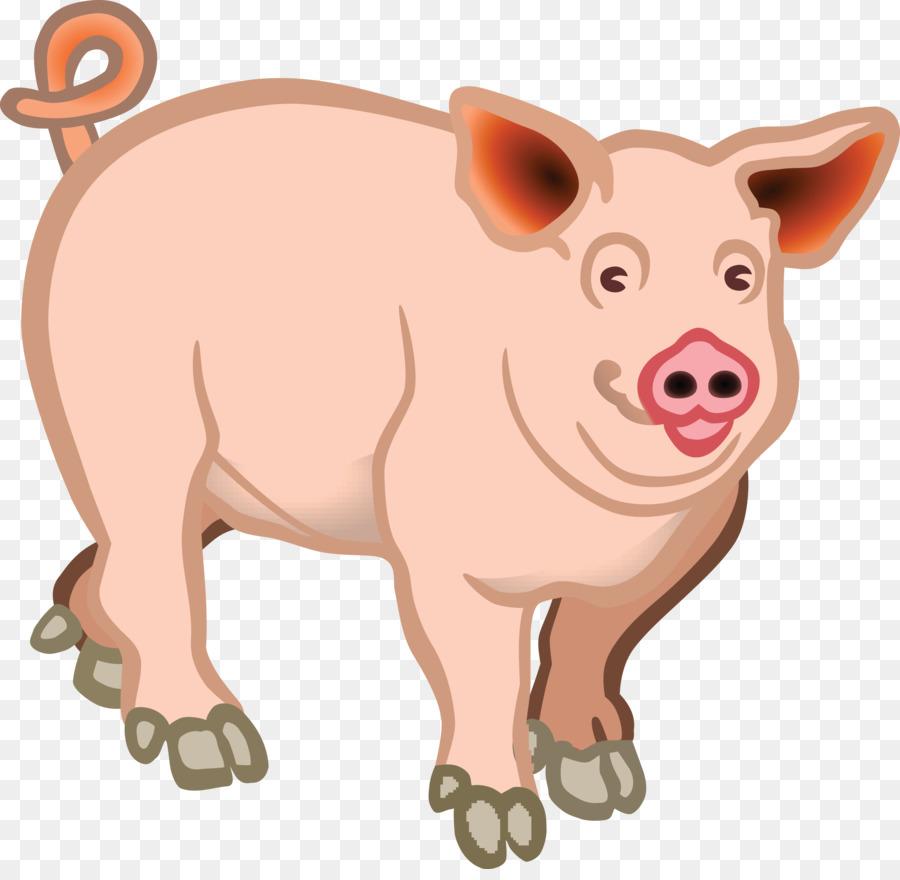 Картинки свиньи на прозрачном фоне для детей