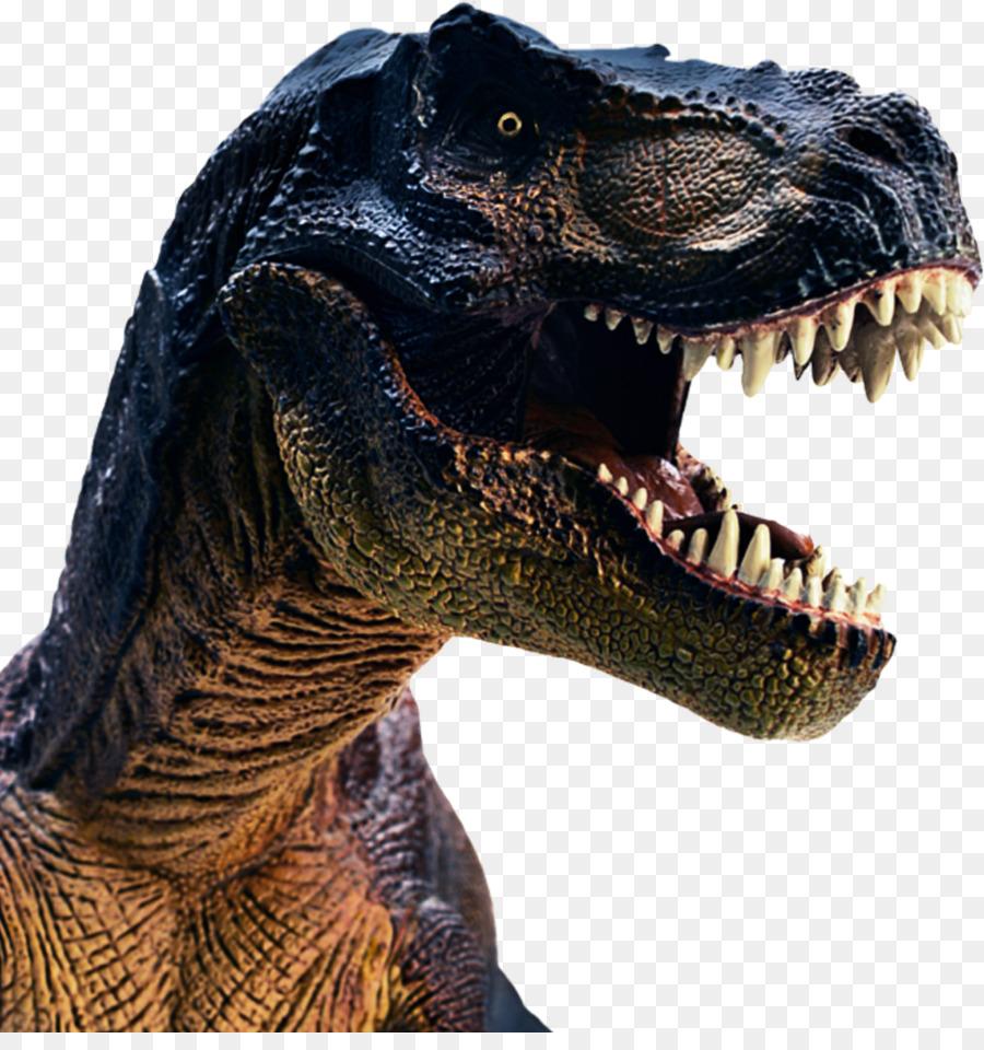 Картинки факами, картинки динозавра рекса