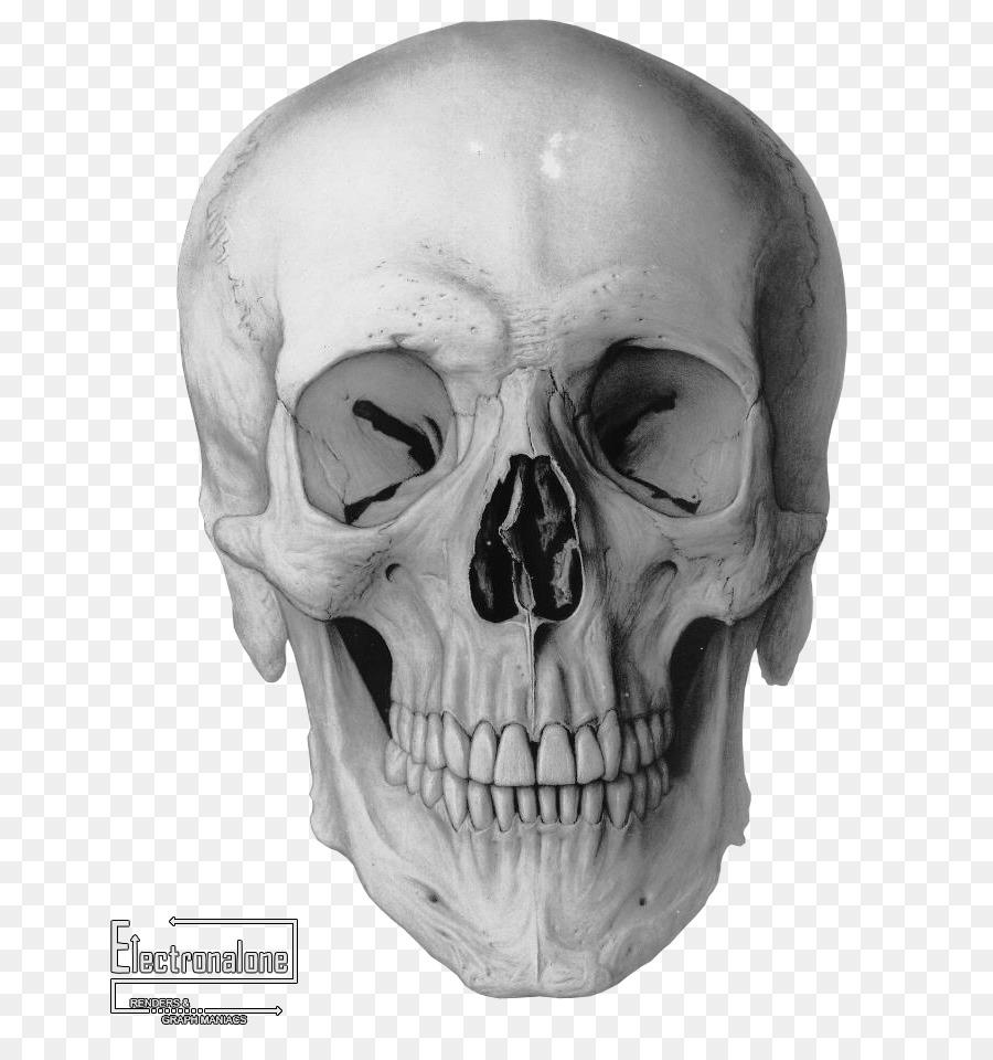 поверьте коллекционеру картинки череп человек велосипедах нельзя ездить
