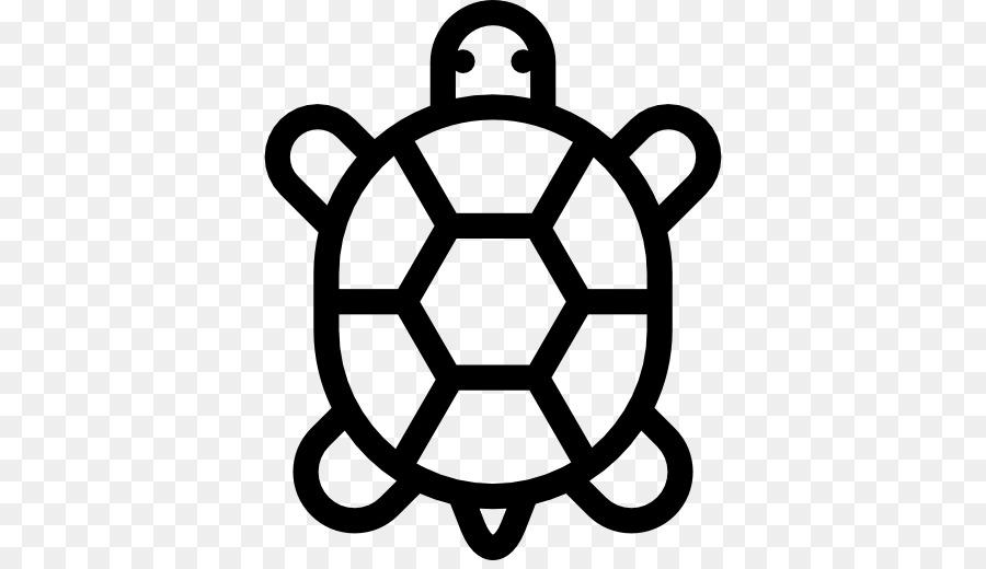 картинки символы черепашки какие получить