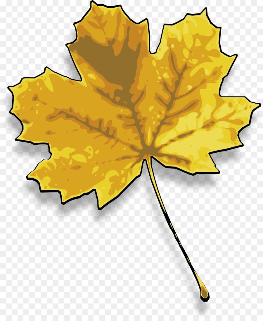Картинки листики желтые
