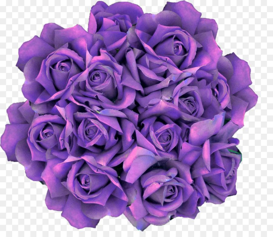 Картинки про, картинки фиолетовые розы на белом фоне