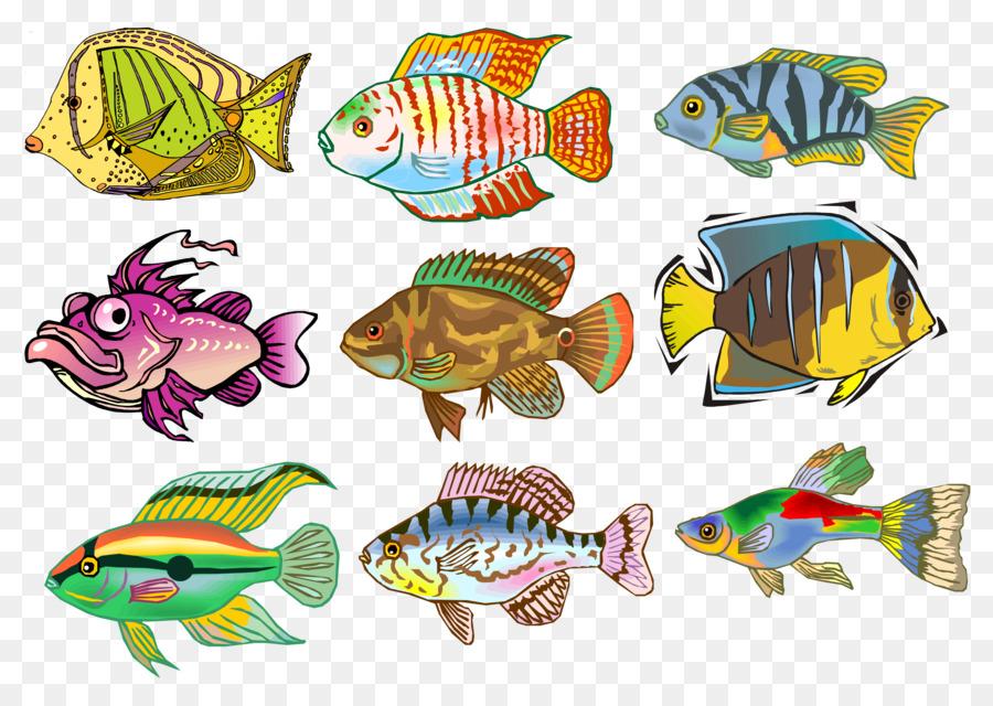 Рисунки рыбок картинки цветные пресноводные