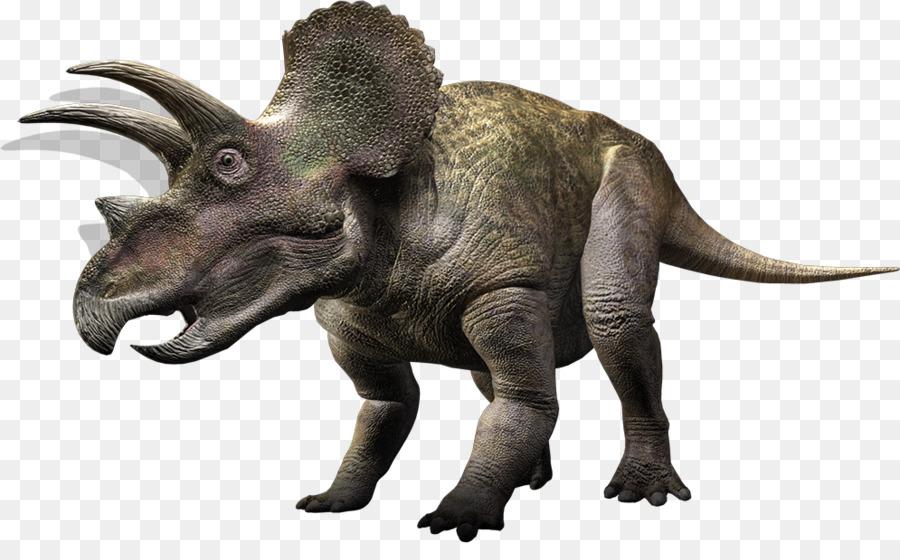 по-разному динозавр трицератопс картинки на белом фоне молод, момент