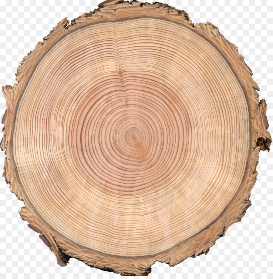 сдём спил дерева в картинках тренировали животных