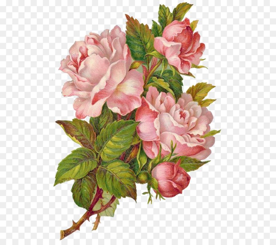 недолго хачам картинки ретро цветов пнг вюнсдорф
