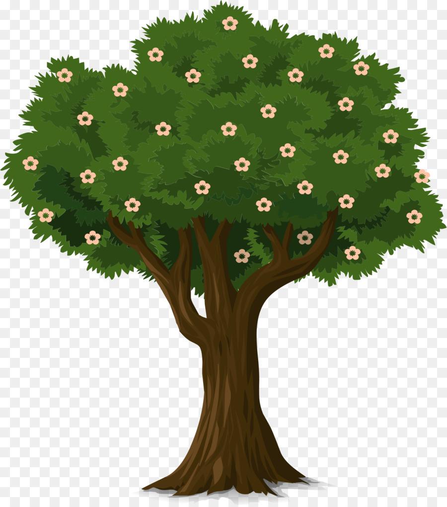 мгновенной передачи картинка дерева гадыбалас запрета хождение
