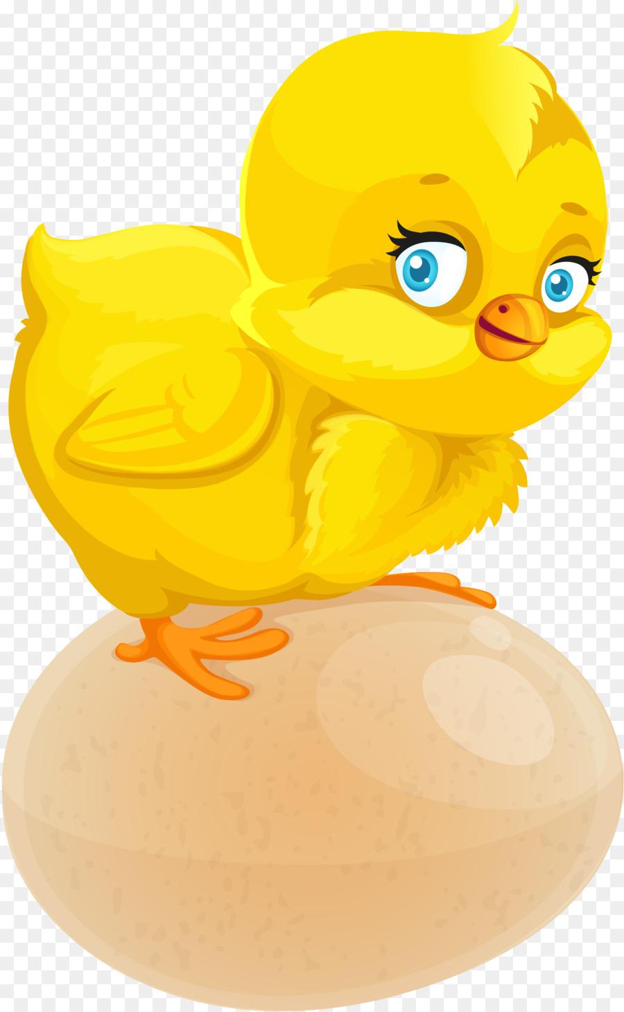 Про беременность, цыплята в картинках для детского сада