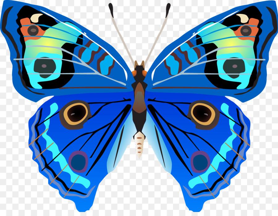 Картинки для детей рисованные бабочка, братишке