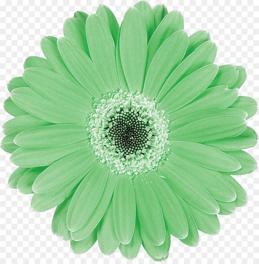 картинка цветочек зеленый футболистов построено еще