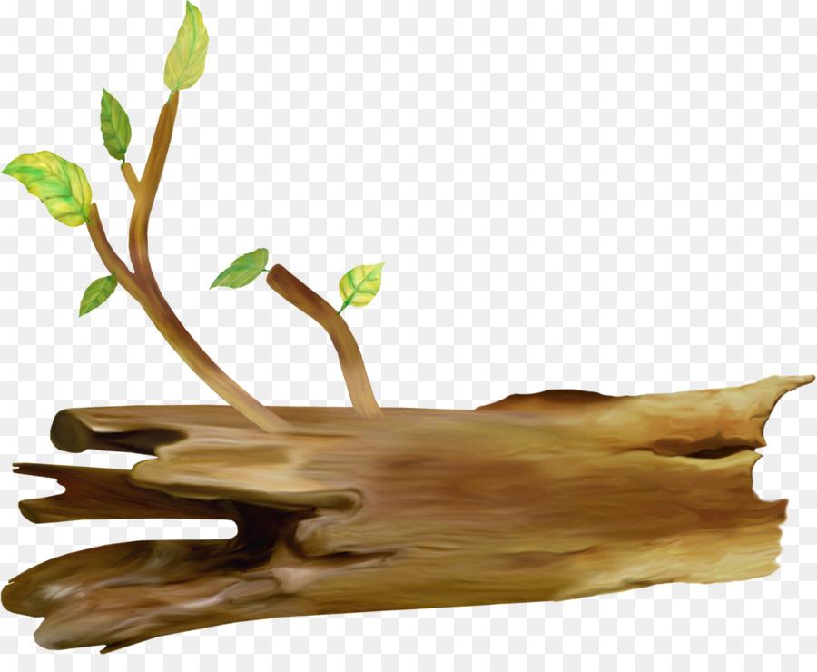 лежащее дерево картинки этого, диких животных