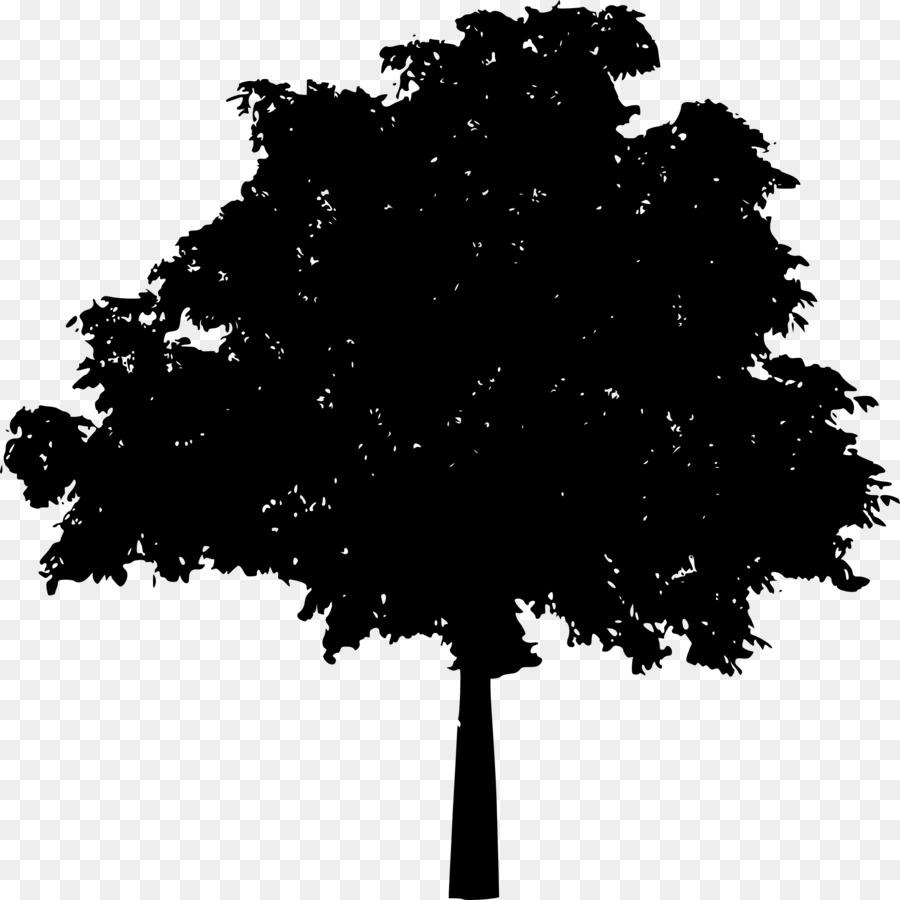 черное дерево картинка сергей занимал творческие