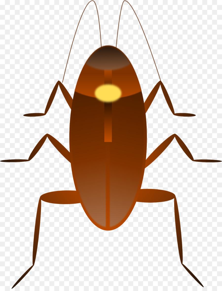 Рисунки картинки таракан