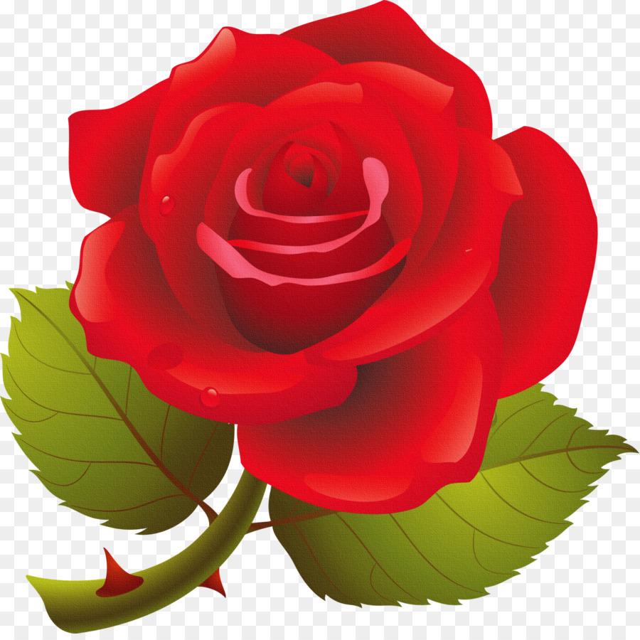 Картинки с изображением розы для детей